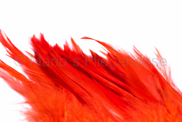 Hareline Strung Chineese Saddle Hackle