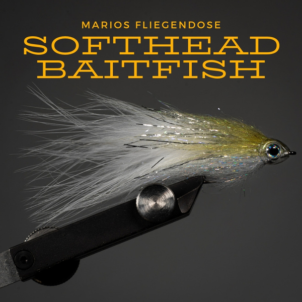 Softhead Baitfish
