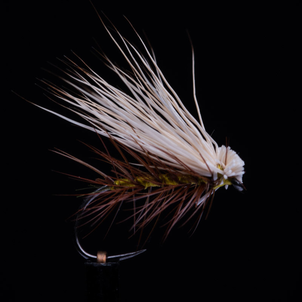 Elk Hair Caddis Golden Olive 12