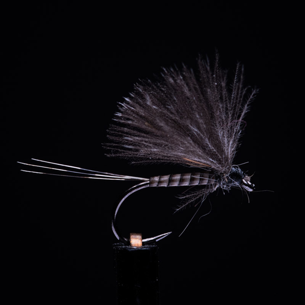 Quill Body BWO Natural 18